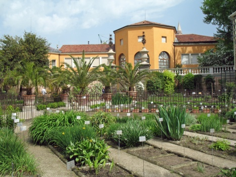 The first Botanic Garden in Europe, operated by the University of Padova, and on the UNESCO World Heritage list since 1997