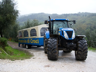 Tractor used for Olive harvesting
