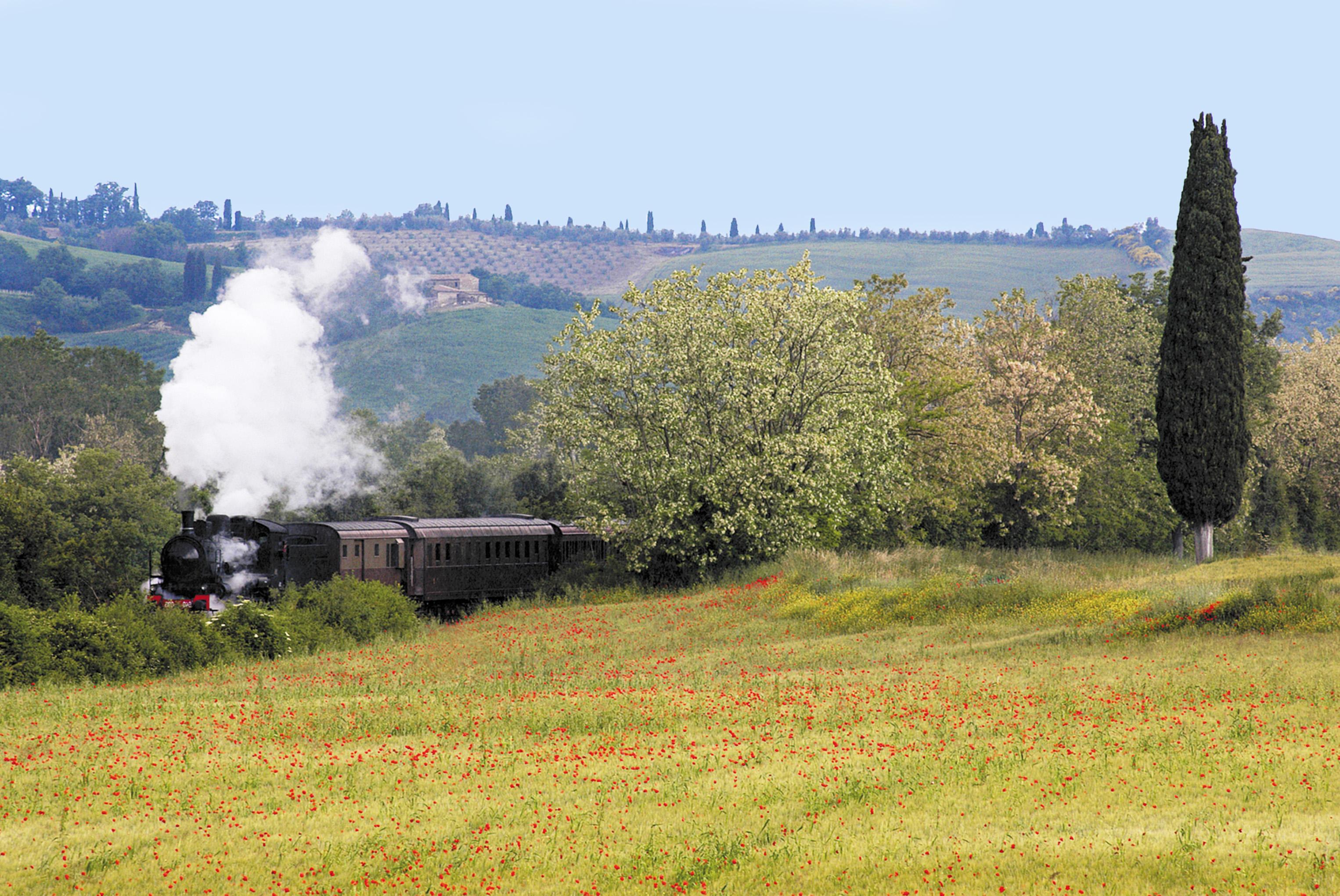 Steam Train   Tuscan experience